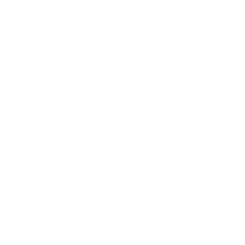 icons8-quality-480